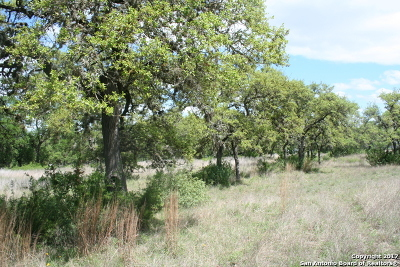Boerne Residential Lots & Land New: Tract 2 State Highway 46 E