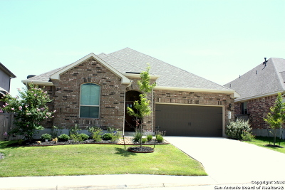 Boerne TX Single Family Home New: $314,999
