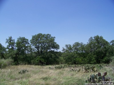 Farm & Ranch New: Lot 6 County Road 473