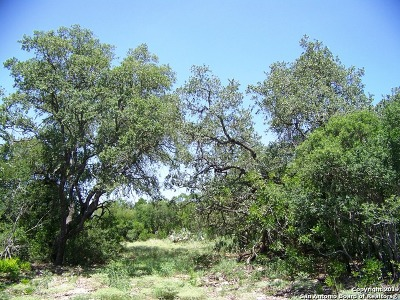 Castroville Farm & Ranch Active Option: Lot 12 County Road 473