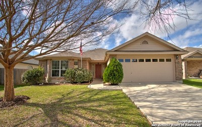 New Braunfels Single Family Home New: 2544 Hunt St