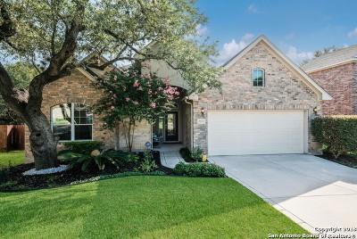 San Antonio TX Single Family Home New: $324,900
