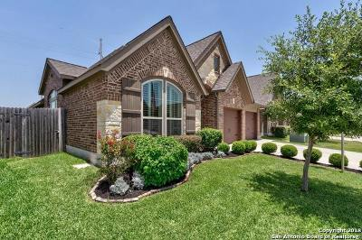 Seguin Single Family Home For Sale: 2162 Pioneer Pass