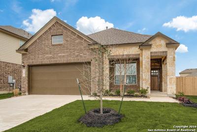 San Antonio Single Family Home New: 8209 Dublin Forest