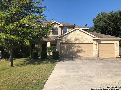 San Antonio Single Family Home New: 25603 Kicking Bird