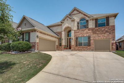 San Antonio Single Family Home New: 12323 Lexi Petal