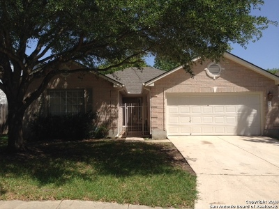 San Antonio Single Family Home New: 2735 Montebello