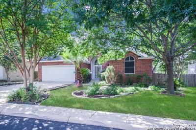San Antonio Single Family Home New: 11715 Millsway Dr