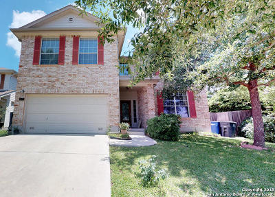 New Braunfels Single Family Home New: 2673 Dove Crossing Dr