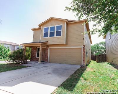 San Antonio Single Family Home New: 4402 Baffin Peak