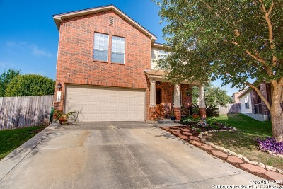 San Antonio Single Family Home New: 11103 Verbena Path