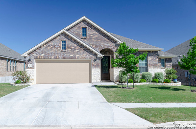 New Braunfels Single Family Home New: 3128 Barker Cypress