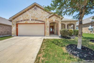 Boerne TX Single Family Home New: $285,000