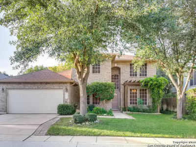 Helotes Single Family Home New: 9531 Aqua Verde