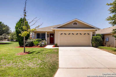 San Antonio Single Family Home New: 11719 Basil Grass