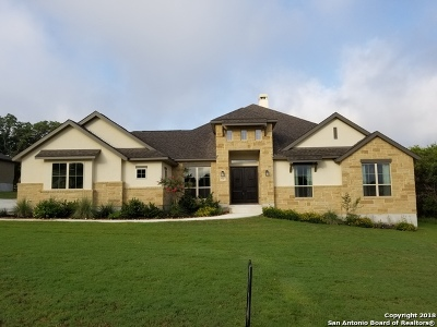 New Braunfels Single Family Home New: 730 Cambridge Dr