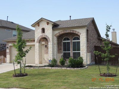 San Antonio Single Family Home New: 12127 Pinon Ranch