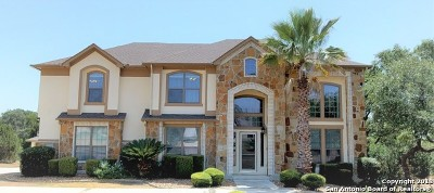 San Antonio Single Family Home New: 13715 Box T Dr