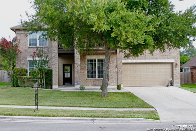 Cibolo Single Family Home New: 369 Brush Trail Bend