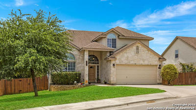 New Braunfels Single Family Home New: 857 San Fernando Ln