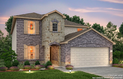 San Antonio TX Single Family Home New: $280,182
