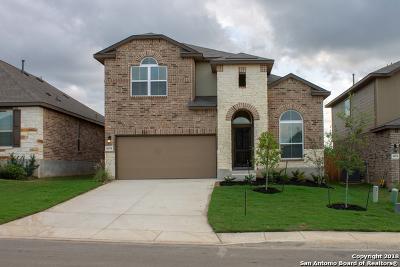 San Antonio TX Single Family Home New: $308,884