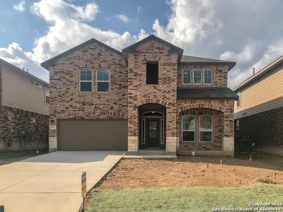 San Antonio TX Single Family Home New: $244,400