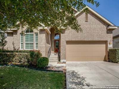 Boerne Single Family Home New: 26647 Camden Chase