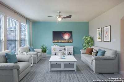San Antonio TX Single Family Home New: $245,000