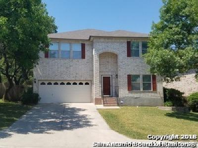 San Antonio Single Family Home New: 2411 Karat Dr