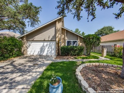 San Antonio Single Family Home New: 4283 Hilton Head St