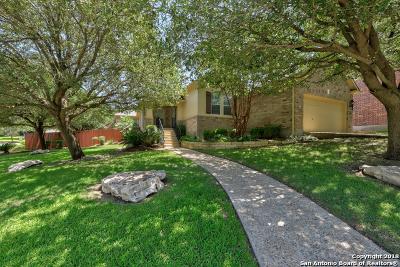 San Antonio Single Family Home New: 20413 Wild Springs Dr