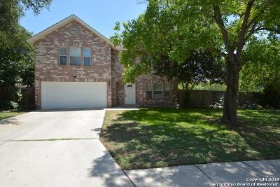 San Antonio Single Family Home New: 7706 Valley Trails St