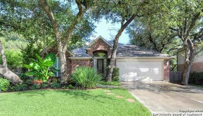 San Antonio TX Single Family Home New: $410,000