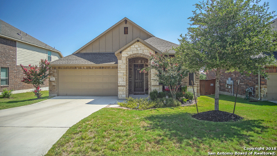 San Antonio TX Single Family Home New: $319,950