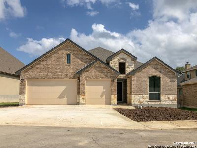 Boerne TX Single Family Home New: $439,665