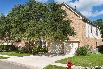 Bexar County Single Family Home New: 20207 Standish Rd