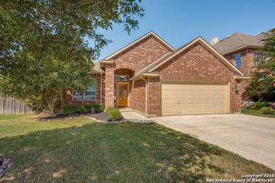 San Antonio Single Family Home New: 3222 Briscoe Trl