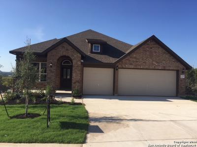 San Antonio Single Family Home New: 1339 Taubenfeld