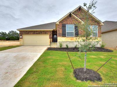 San Antonio Single Family Home New: 1336 Taubenfeld
