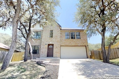 Helotes Single Family Home New: 11610 Emerald Pecan Dr