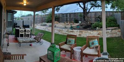 San Antonio Single Family Home New: 10703 Ysamy Way