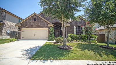 Cibolo Single Family Home New: 401 Canterbury Hill