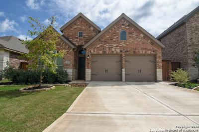 San Antonio Single Family Home New: 8610 Lajitas Bend