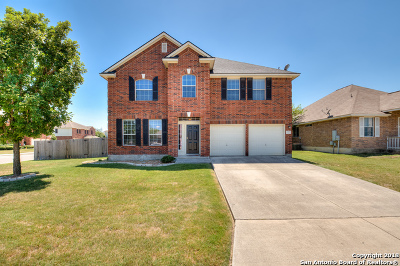 New Braunfels Single Family Home New: 2070 Carlisle Castle Dr
