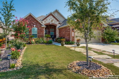 Helotes Single Family Home For Sale: 10510 Cima Vista