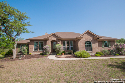 Spring Branch Single Family Home For Sale: 181 Mexican Hat Dr