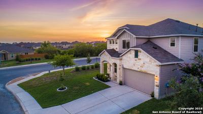 Single Family Home For Sale: 9103 Vondel Park