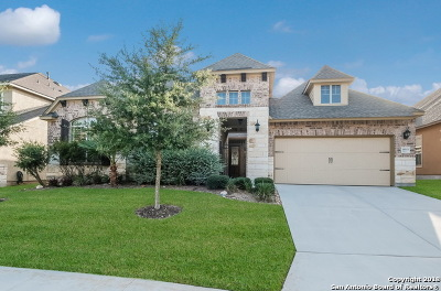San Antonio Single Family Home For Sale: 18503 Golden Maize