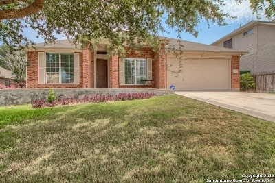 Cibolo Single Family Home For Sale: 104 Cinnabar Trail